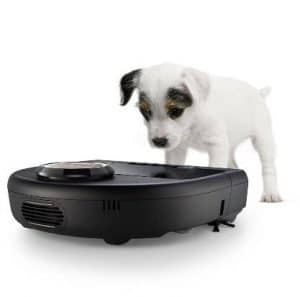 Dogs love robot vacuums
